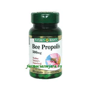 Nature's Bounty Propolis 500 mg