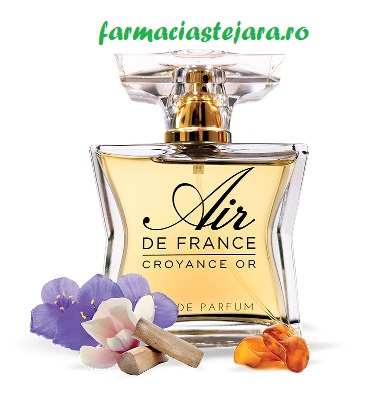 Fiterman Parfum Air de France Croyance Or Fruty and Floral Scent